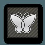 قالب وردپرسی سایت دانلودی و خبری Butterfly Responsive Clean Blog